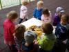 Pokušanje smutijev in kostanjev piknik v vrtcu